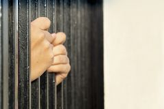 Both hands caught the cage. Concept Both hands  : Requesting help from difficulties in the cage stock photo