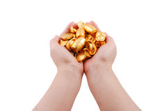 Both hands holding gold coins Royalty Free Stock Photo