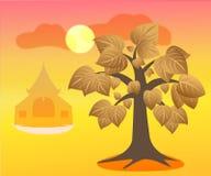 Bothi Tree&temple. Golden Bo tree with sunset theme Stock Photo