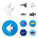 Botia, clown, piranha, cichlid, hummingbird, guppy,Fish set collection icons in monochrome,flat style vector symbol. Stock illustration Stock Photo