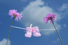 Botines rosados del bebé que cuelgan en una línea de ropa Fotografía de archivo