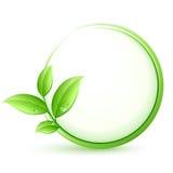 Botón verde del eco Imagen de archivo libre de regalías