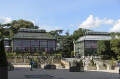 Botánica en el Museo Nacional de la historia natural Foto de archivo