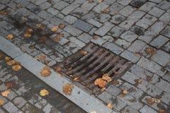 Botola della fogna di drenaggio nel parco autunnale coperto di foglie gialle Copertura di drenaggio dal lato della strada fotografia stock
