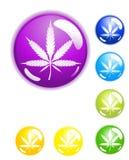 Botones de la marijuana fotos de archivo libres de regalías