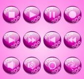 Botones rosados de la hospitalidad de la flor Imagen de archivo