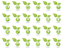 Botones verdes del Web de la naturaleza Imagenes de archivo