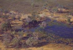 Botswana: Airshot från Okavango-deltan översvämmar i centralen royaltyfri fotografi