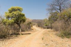 Botswana Desert Road Stock Images