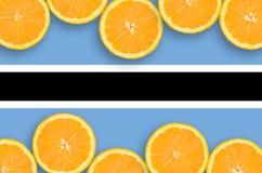 Botswana flag in citrus fruit slices horizontal frame royalty free stock images