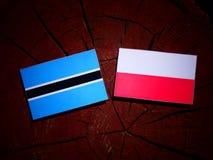 Botswana flag with Polish flag on a tree stump isolated. Botswana flag with Polish flag on a tree stump vector illustration