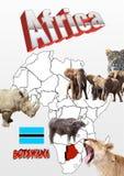 Botswana mapa z flaga i zwierzętami Fotografia Stock