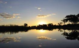 Botswana: Puesta del sol en los Okavango-Delta-pantanos imagen de archivo libre de regalías