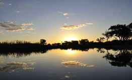 Botswana: Sunset in the Okavango-Delta-swamps. royalty free stock image