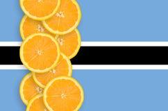 Botswansk vertikal rad för flagga- och citrusfruktskivor arkivfoton