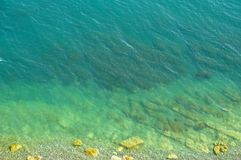 Botten av havet Arkivfoton