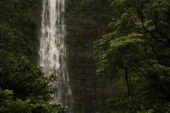 Botten av Waimoku nedgångar royaltyfria bilder