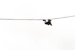 Bottes accrochant sur le câble de l'électricité Photos libres de droits