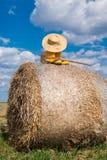 Bottes, chapeau et houe Photos libres de droits