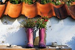 Bottes en caoutchouc pourpres avec des fleurs photographie stock