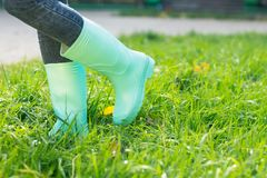 Bottes en caoutchouc sur une herbe Image stock