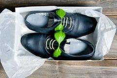 Bottes en cuir italiennes Images libres de droits
