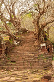 Bottich Phou oder Wat Phu e in Champasak, Süd-Laos stockbilder