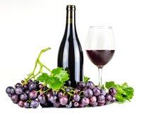 Bottiglia, bicchiere di vino ed uva del vino rosso Fotografia Stock