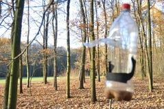 Bottiglia come alimentatore Fotografia Stock Libera da Diritti