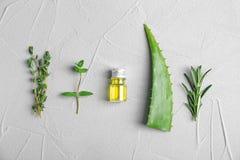 Bottiglia con i petroli essenziali e le erbe fresche Fotografie Stock