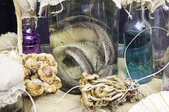 Bottiglia con il serpente Fotografia Stock Libera da Diritti