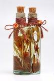 Bottiglia con le piante fotografia stock libera da diritti