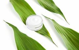 Bottiglia crema bianca disposta, pacchetto in bianco dell'etichetta per derisione su su un fondo verde del fogliame Il concetto d immagine stock libera da diritti