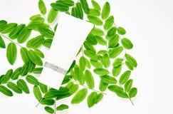 Bottiglia crema bianca, pacchetto in bianco dell'etichetta per derisione su su un fondo verde del fogliame fotografie stock