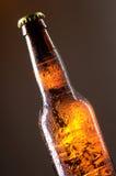 Bottiglia da birra Immagine Stock