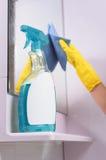 Bottiglia del pulitore di finestra per le finestre e gli specchi immagine stock