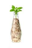 Bottiglia del riso Fotografia Stock Libera da Diritti