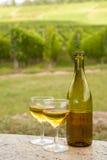 Bottiglia del vino dell'Alsazia Fotografie Stock