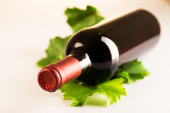 Bottiglia del vino rosso con le foglie di vite di autunno Immagini Stock Libere da Diritti