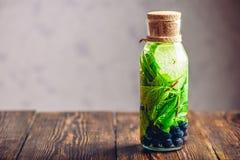 Bottiglia dell'acqua della disintossicazione Fotografie Stock