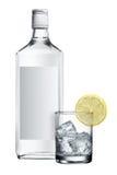 Bottiglia dell'alcool Fotografia Stock Libera da Diritti
