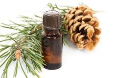 Bottiglia dell'olio dell'albero di abete Immagine Stock Libera da Diritti