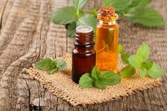 Bottiglia dell'olio di menta piperita e della menta fresca su un vecchio fondo di legno immagini stock libere da diritti