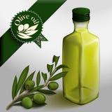 Bottiglia dell'olio di oliva Immagine Stock