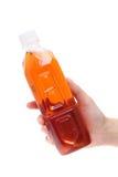 Bottiglia della tenuta della mano di tè Immagine Stock