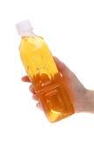 Bottiglia della tenuta della mano di tè Fotografia Stock