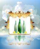 Bottiglia di acqua della frutta e del minerale Fotografia Stock