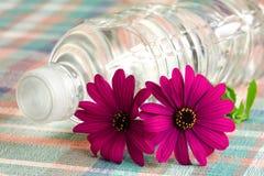 Bottiglia di acqua minerale Fotografia Stock