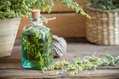 Bottiglia di assente o tintura delle erbe curative dell'assenzio e del dragoncello fotografia stock