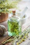 Bottiglia di assente o tintura delle erbe sane del dragoncello Fotografia Stock Libera da Diritti